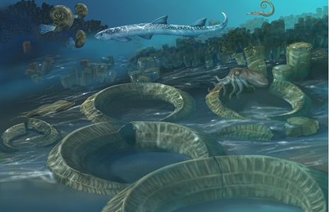 A rendering of an underwater marine scene depicting life ~145-65 million years ago, when rudist clams were the major reef builders.
