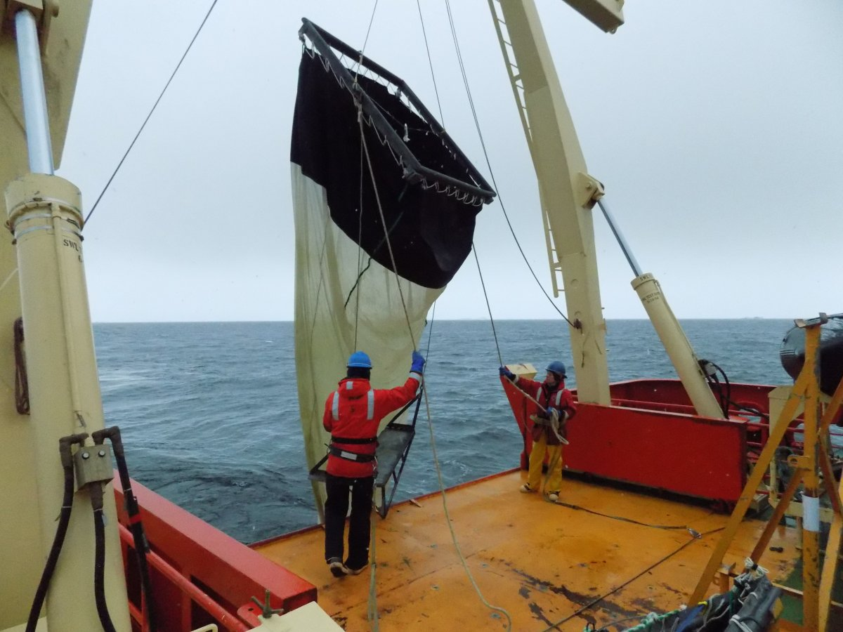 Working the back deck and deploying the two meter net tow. Photo credit: Julian Race