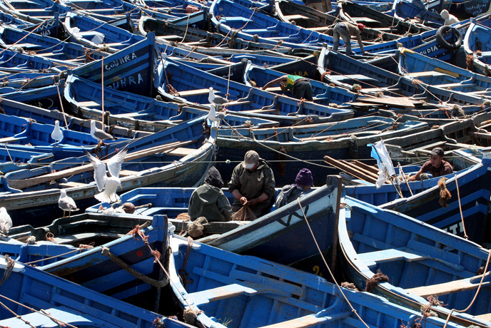 Fleet or Fishing Boats in Port in Morroco<div class='credit'><strong>Credit:</strong> Fleet or Fishing Boats in Port in Morroco</div>