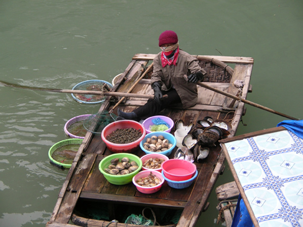 Fresh Shellfish for Sale in Vietnam<div class='credit'><strong>Credit:</strong> Fresh Shellfish for Sale in Vietnam</div>