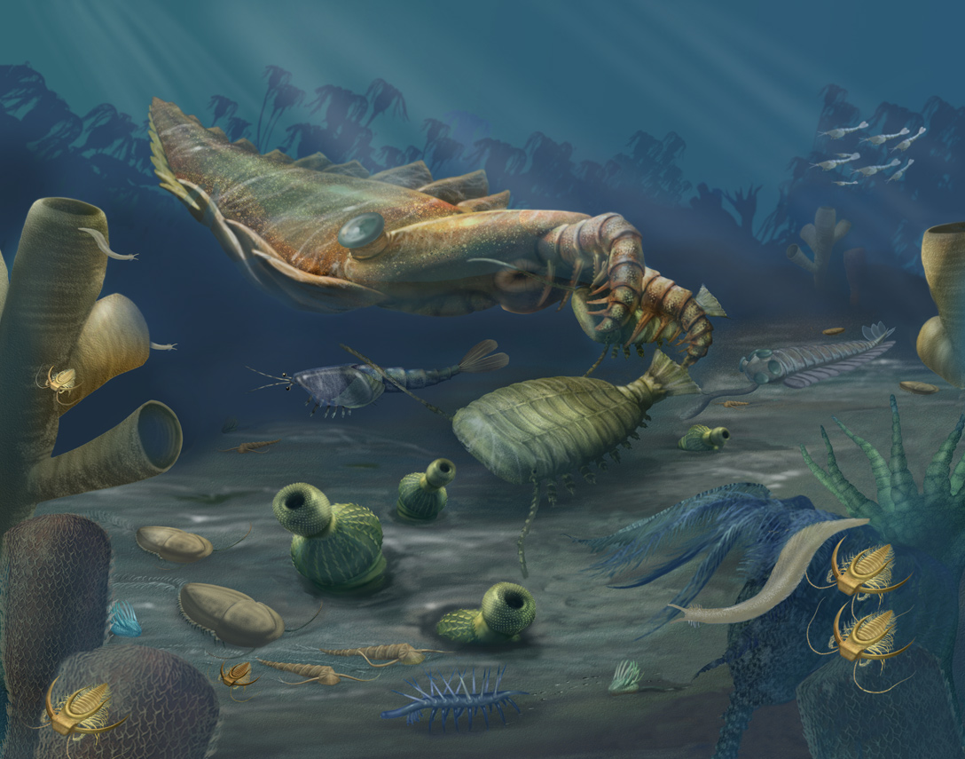 A rendering of an underwater marine scene from the Cambrian Period, featuring an arthropod, annelids, and other animals.<div class='credit'><strong>Credit:</strong> A rendering of an underwater marine scene from the Cambrian Period, featuring an arthropod, annelids, and other animals.</div>