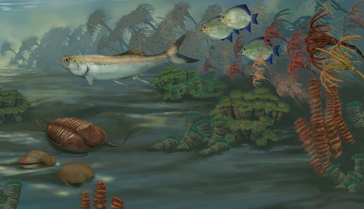 A rendering of an underwater marine scene from ~359 - 318 million years ago, featuring fish, crinoids, brachiopods and other organisms. <div class='credit'><strong>Credit:</strong> A rendering of an underwater marine scene from ~359 - 318 million years ago, featuring fish, crinoids, brachiopods and other organisms. </div>
