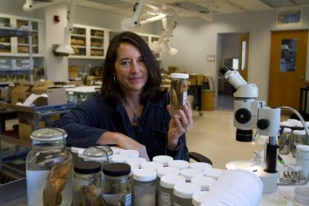Smithsonian scientist who discovered new species in her laboratory<div class='credit'><strong>Credit:</strong> Smithsonian scientist who discovered new species in her laboratory</div>
