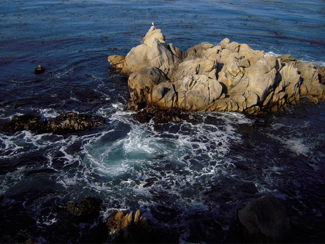 A bird sits atop an outcrop of rocks surrounded by turbulent water. <div class='credit'><strong>Credit:</strong> A bird sits atop an outcrop of rocks surrounded by turbulent water. </div>