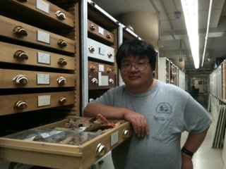NMNH Research Collaborator Chris Mah<div class='credit'><strong>Credit:</strong> NMNH Research Collaborator Chris Mah</div>