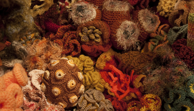 Detail of The Smithsonian Community Crochet Reef<div class='credit'><strong>Credit:</strong> Detail of The Smithsonian Community Crochet Reef</div>