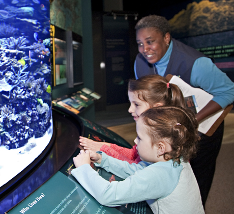 Two young visitors look into the coral reef aquarium at the Smithsonian's Sant Ocean Hall<div class='credit'><strong>Credit:</strong> Two young visitors look into the coral reef aquarium at the Smithsonian's Sant Ocean Hall</div>