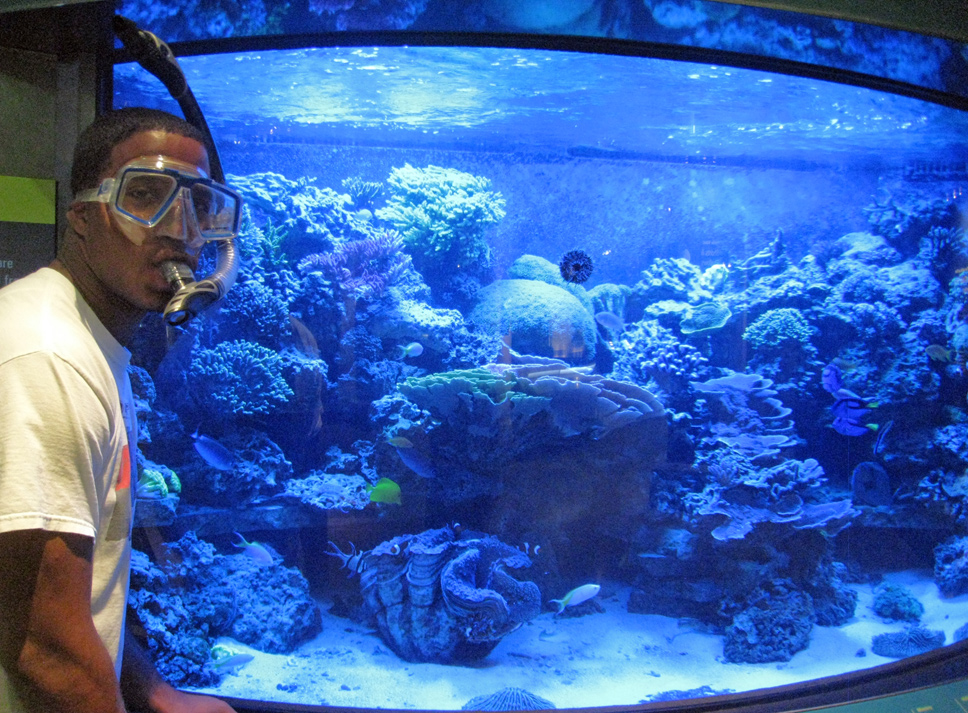 Ocean Portal summer 2011 intern Brandon Adkins poses next to the aquarium in the Smithsonian's Sant Ocean Hall.<div class='credit'><strong>Credit:</strong> Ocean Portal summer 2011 intern Brandon Adkins poses next to the aquarium in the Smithsonian's Sant Ocean Hall.</div>