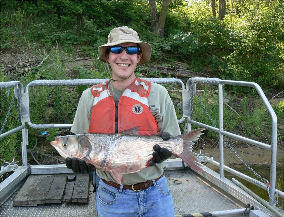 USFW Biologist Jason Goldberg, on a boat, holding an Asian carp <div class='credit'><strong>Credit:</strong> USFW Biologist Jason Goldberg, on a boat, holding an Asian carp </div>