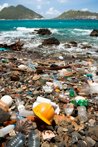 plastic bottles, cans, a yellow hard hat, and other human refuse litters a tropical beach<div class='credit'><strong>Credit:</strong> plastic bottles, cans, a yellow hard hat, and other human refuse litters a tropical beach</div>