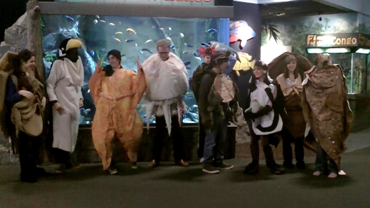 Students in marine life costumes pose in an aquarium.<div class='credit'><strong>Credit:</strong> Students in marine life costumes pose in an aquarium.</div>