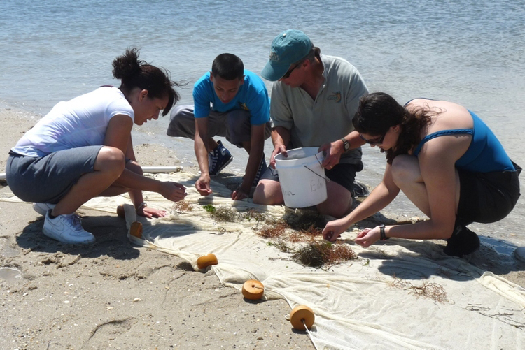 Students examine items collected on a beach.<div class='credit'><strong>Credit:</strong> Students examine items collected on a beach.</div>