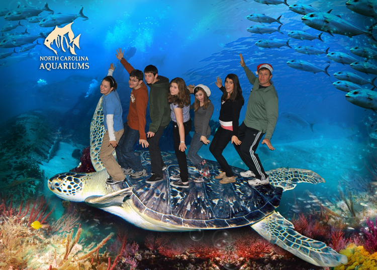 Students are made to look like they are riding the back of a giant turtle in a doctored photo.<div class='credit'><strong>Credit:</strong> Students are made to look like they are riding the back of a giant turtle in a doctored photo.</div>