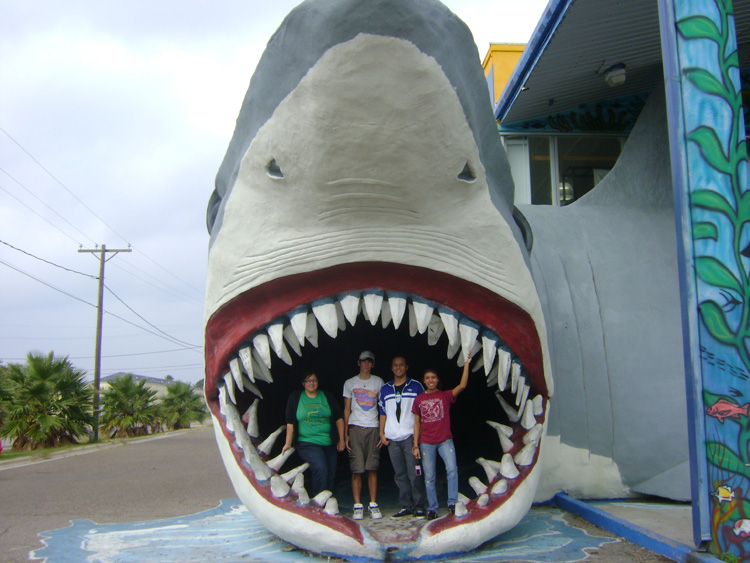 Students pose in the mouth of a giant model of a shark.<div class='credit'><strong>Credit:</strong> Students pose in the mouth of a giant model of a shark.</div>