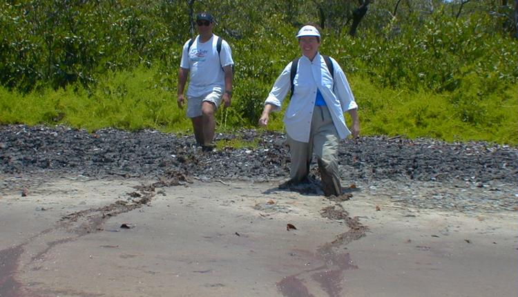 Anne Chamberlain and Marc Frischer stride through a mangrove pond at Twin Cays, Belize.<div class='credit'><strong>Credit:</strong> Anne Chamberlain and Marc Frischer stride through a mangrove pond at Twin Cays, Belize.</div>