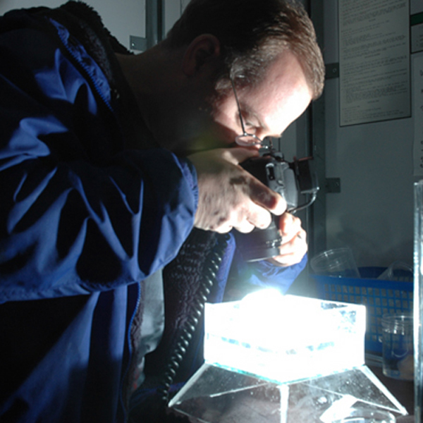 Scientist Kevin Raskoff documents organisms by building an aquarium.<div class='credit'><strong>Credit:</strong> Scientist Kevin Raskoff documents organisms by building an aquarium.</div>