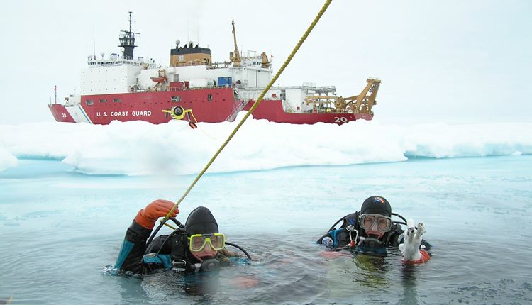 Ice divers descend through a hole in the ice.<div class='credit'><strong>Credit:</strong> Ice divers descend through a hole in the ice.</div>