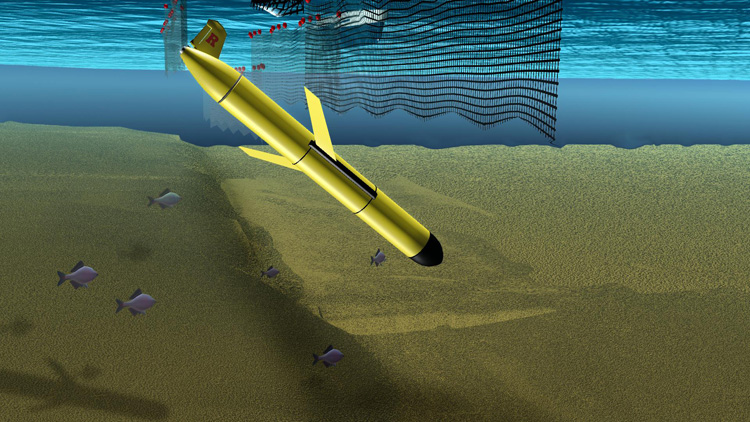 Illustration of Robotic Glider Evading Fishing Nets<div class='credit'><strong>Credit:</strong> Illustration of Robotic Glider Evading Fishing Nets</div>
