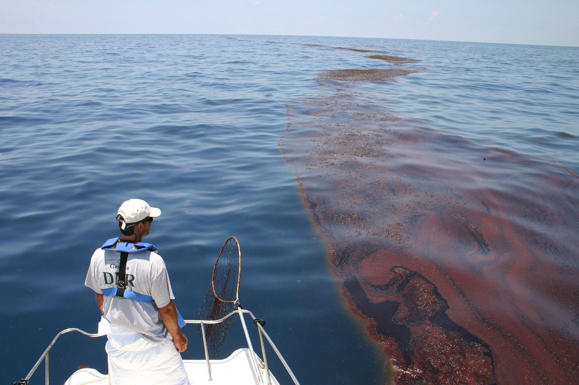 the deepwater horizon oil spill two years later smithsonian the deepwater horizon oil spill two years later smithsonian portal