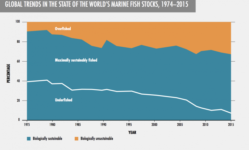 graph of trends in world fish stocks