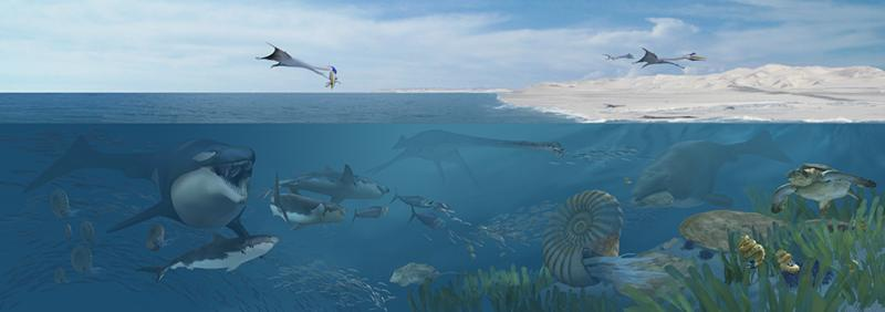 An illustration depicting many sea animals living in the Cretaceous seas off Angola.