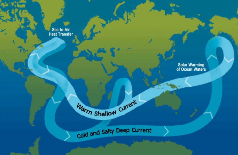 Currents, Waves, and Tides: The Ocean in Motion