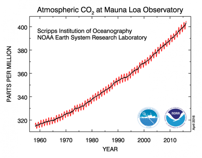 Measurements of carbon dioxide in atmosphere since 1958
