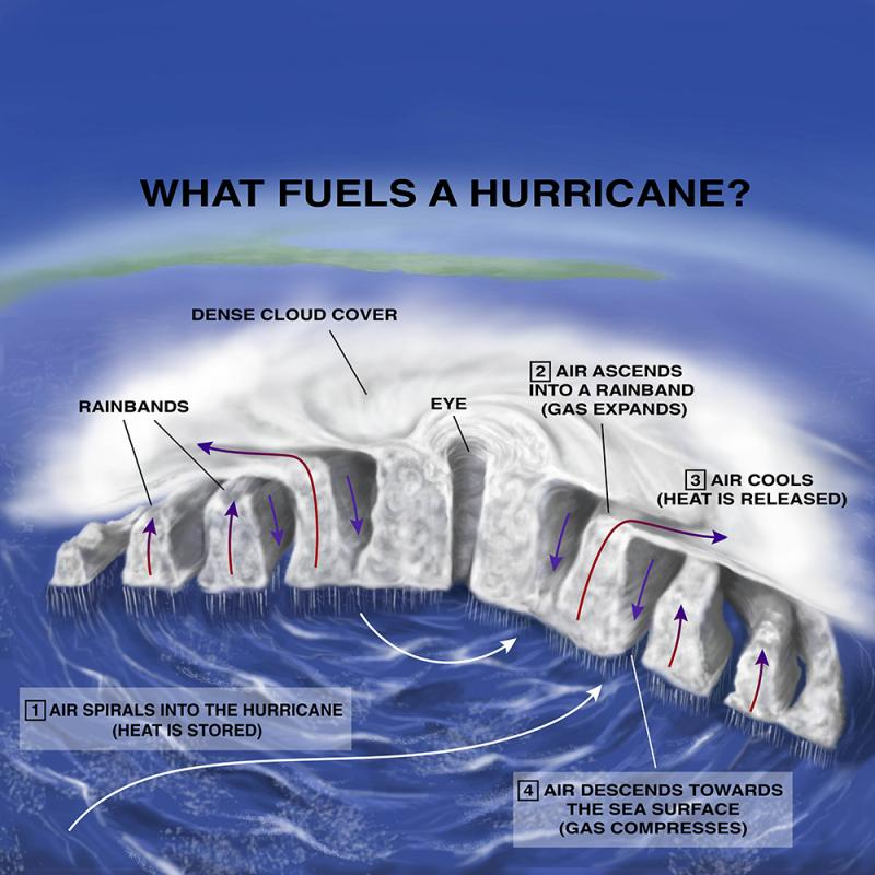 Hurricanes Typhoons And Cyclones Smithsonian Ocean