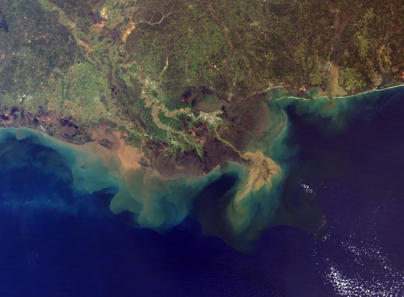 A sediment plume from the mouth of the Mississippi River into the Gulf.