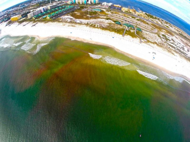 Pink dye was released by CARTHE researchers on the coast of the Gulf of Mexico and its movement tracked using underwater sensors, two small drones, a helicopter and a kite.