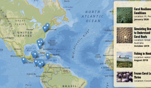 A screenshot of a map with links to stories on the side.