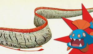 Illustration of a real oarfish vs the Pokémon counterpart.
