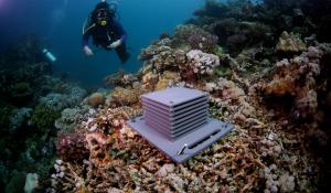 "A ""reef hotel"" made of PVS layers on the seafloor."