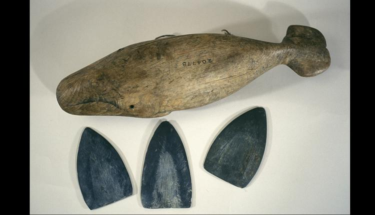 During whale hunts, this carved whale box stored harpoon blades like the three shown beside it.