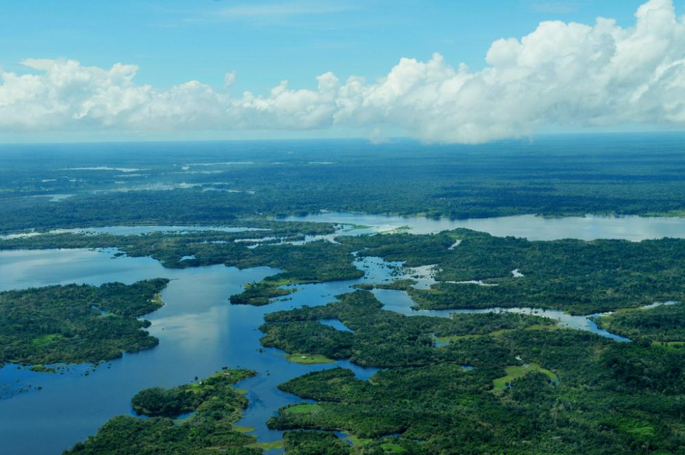 The Amazon River carries all the rainwater that lands in the Amazon rainforest, covering some 2.1 million square miles, into the ocean. And with it, it carries vital nutrients like phosphorus, nitrogen and silicon.