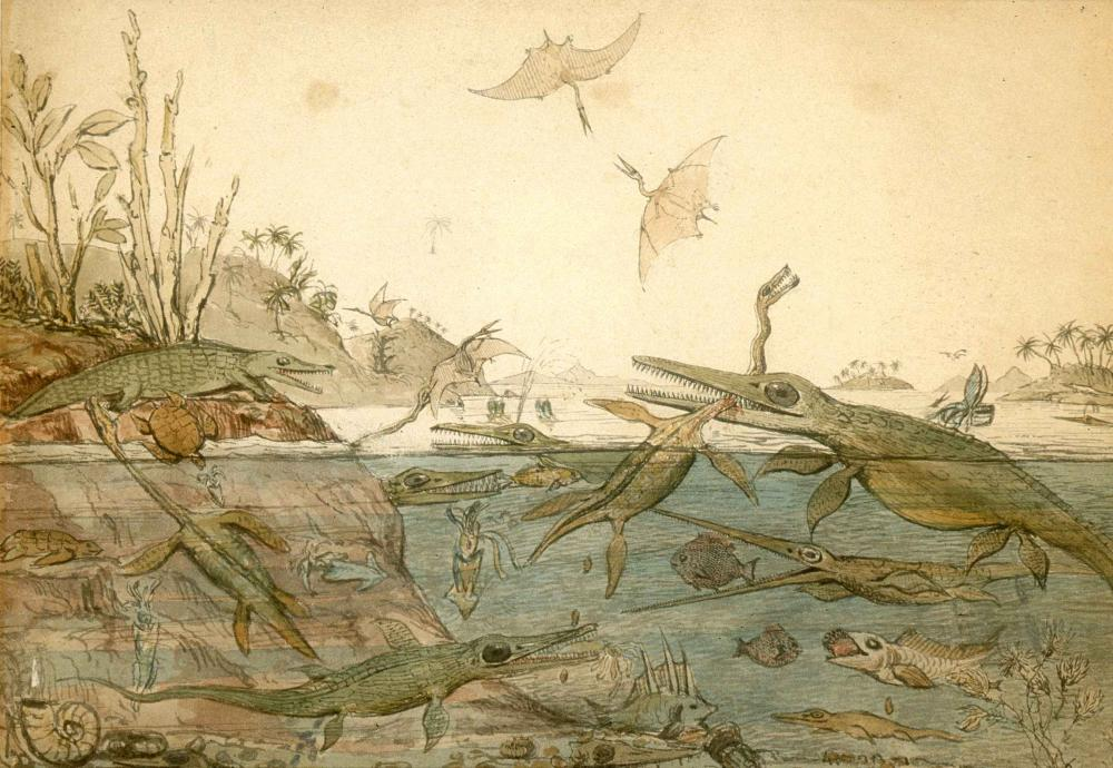 Although in reality an ichthyosaur and plesiosaur would have likely never battled, this widely shared lithograph by artist, geologist and paleontologist Henry De la Beche even inspired author Jules Verne to pen a similar scene in his book, Journey to the C