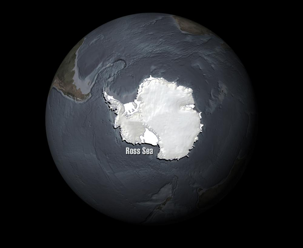 The Ross Sea is a 1.9 million square mile (3.6 million square km) stretch of ocean off the coast of Antarctica.