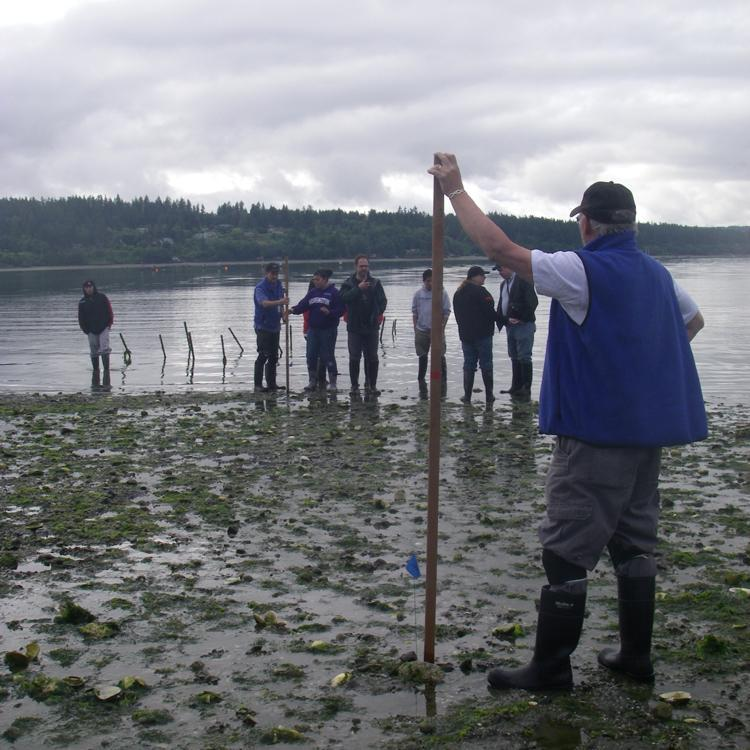 Students examine a beach at low tide.