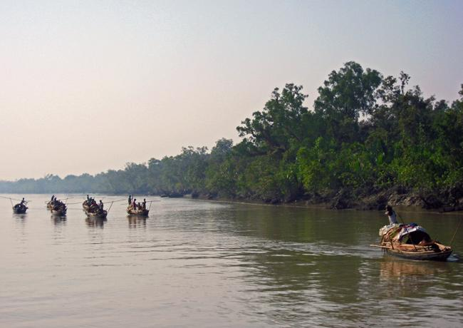 The Sundarbans site in Bangladesh, which was inscribed on the World Heritage List in 1997, includes one of the largest remaining areas of mangroves in the world and supports a rich animal community.