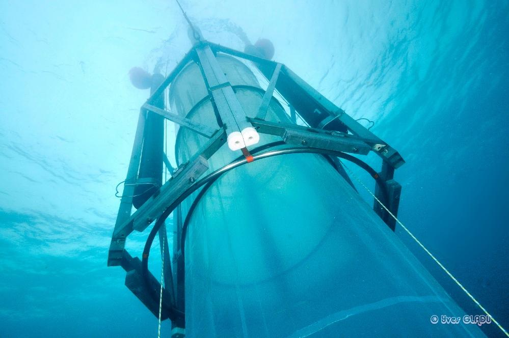By pumping enormous test tubes that are 60-feet deep and hold almost 15,000 gallons of water with carbon dioxide to make the water inside more acidic, researchers can study how zooplankton, phytoplankton and other small organisms will adapt in the wild.