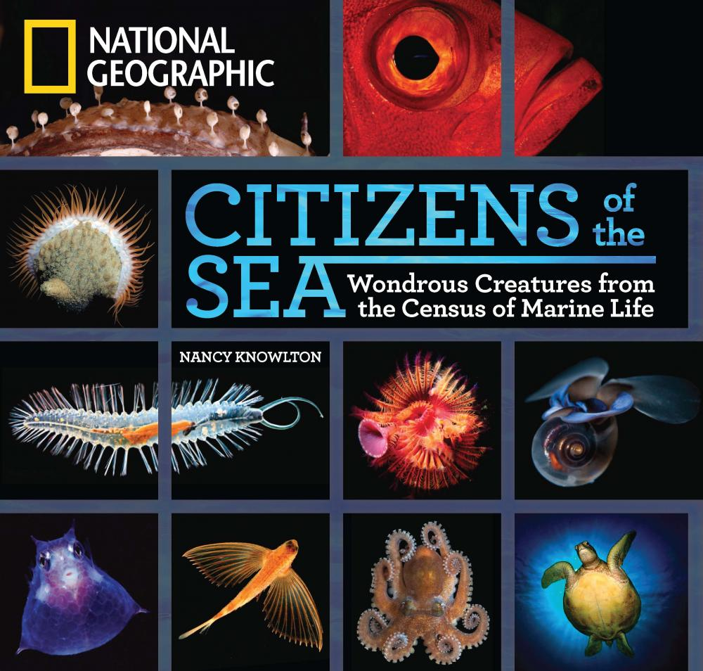Cover of the Book Citizens of the Sea