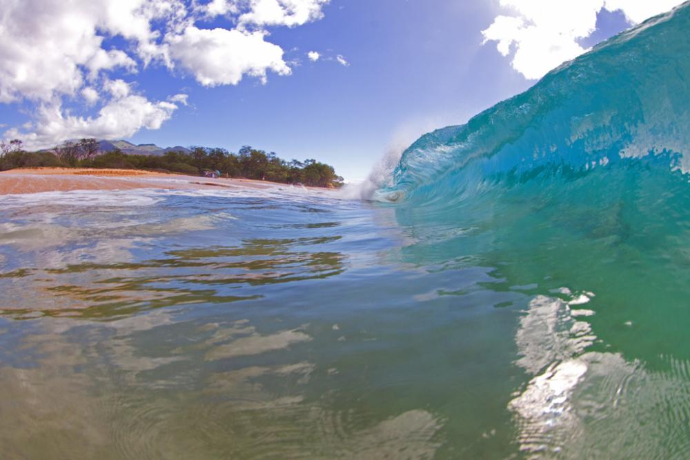 A wave curls near the shore.