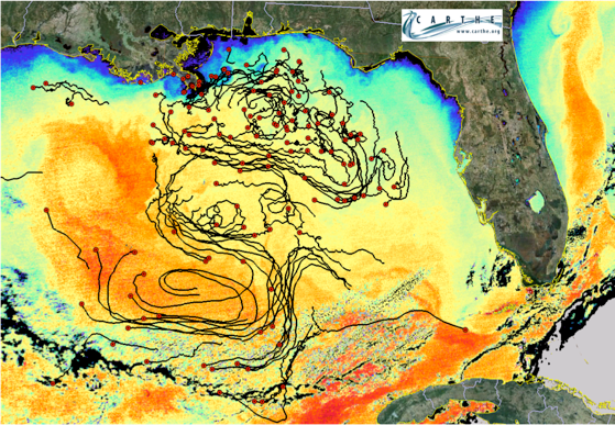 Drifters deployed into the Gulf of Mexico sent location information back to scientists through a GPS satellite. Some of the 5.7 million data points about the drifters locations are seen in this map of the Gulf.
