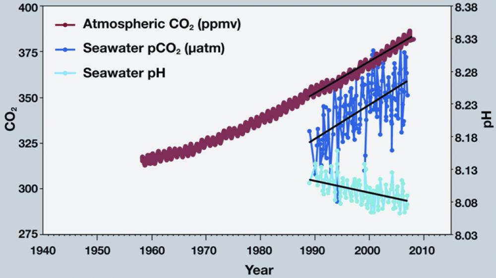 A graph showing rising levels of CO2 in the atmosphere over time.
