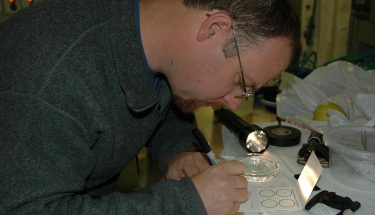 Scientist Kevin Raskoff processes samples of DNA