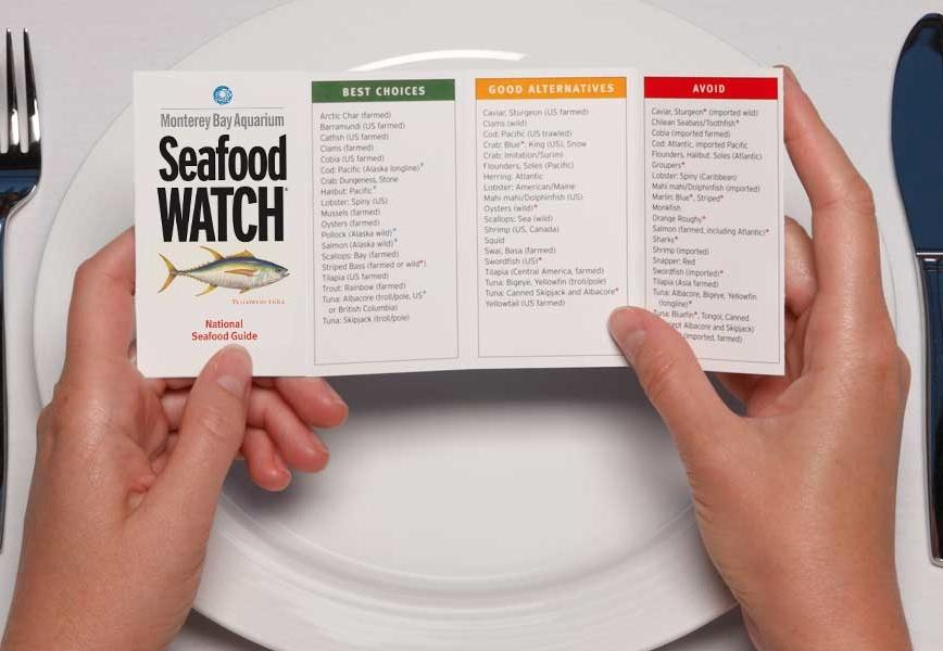 "Monterey Bay Aquarium's Seafood Watch will recommend which fish are ""Best Choices"" for sustainability, which are ""Good Alternatives,"" and which ones you should ""Avoid."""