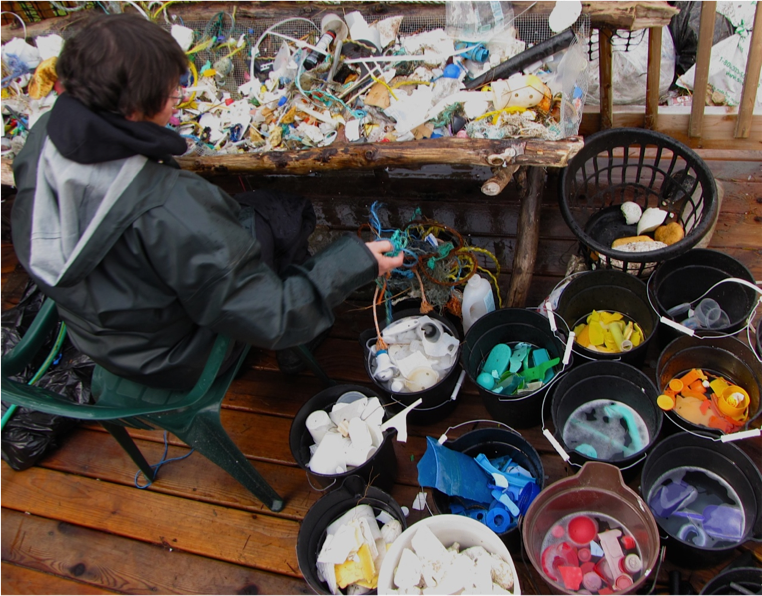 A volunteer sorts washed plastic collected from the beach into buckets by color and size.