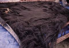 This may look like a mane of hair, but it's actually baleen from a North Atlantic right whale.