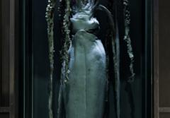 This male giant squid is on display at the Smithsonian's National Museum of Natural History.