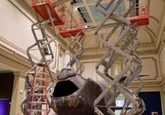 Scaffolding and supports support a life-size model of a right whale in the national Museum of Natural History.